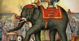 Petite histoire du cirque d'hier à aujourd'hui